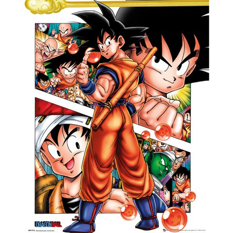 Dragon Ball Z Collage - 16 x 20 Inches Mini Poster