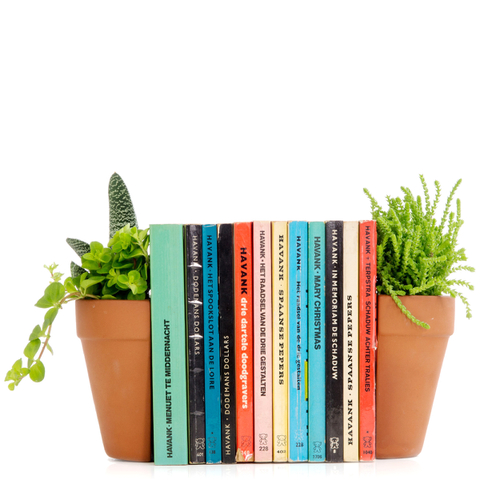 Planter Bookends - Brown