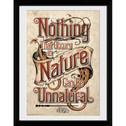 Fantastic Beasts Nature Framed Album Cover - 12
