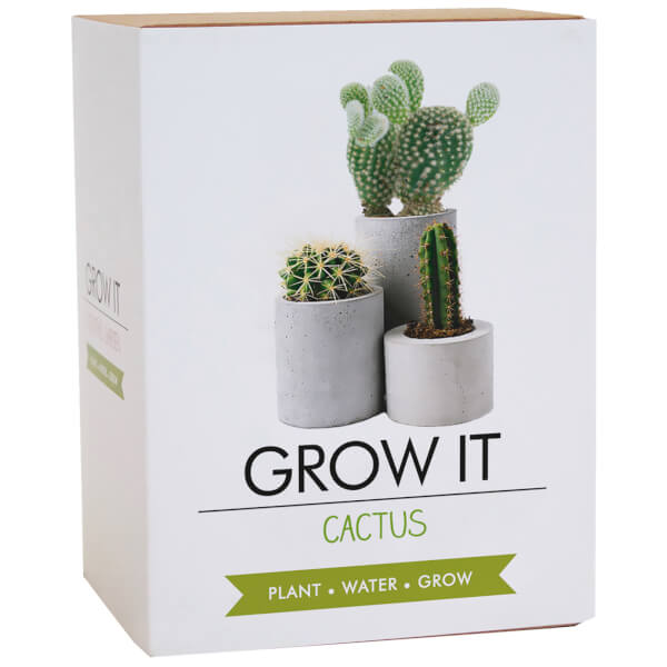 Grow It Cactus Plant