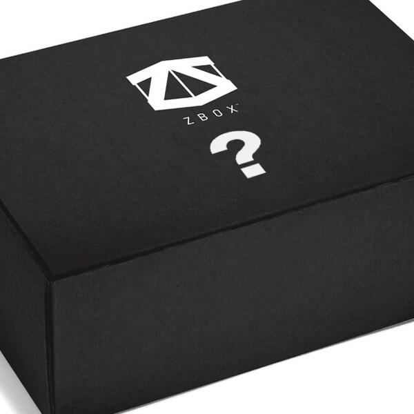 Surprise Past ZBOX