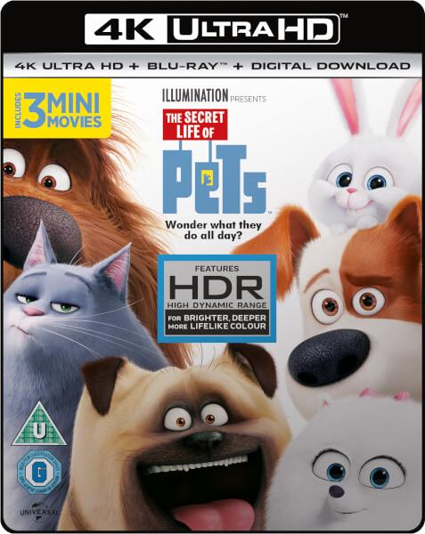 Comme des bêtes - 4K Ultra HD