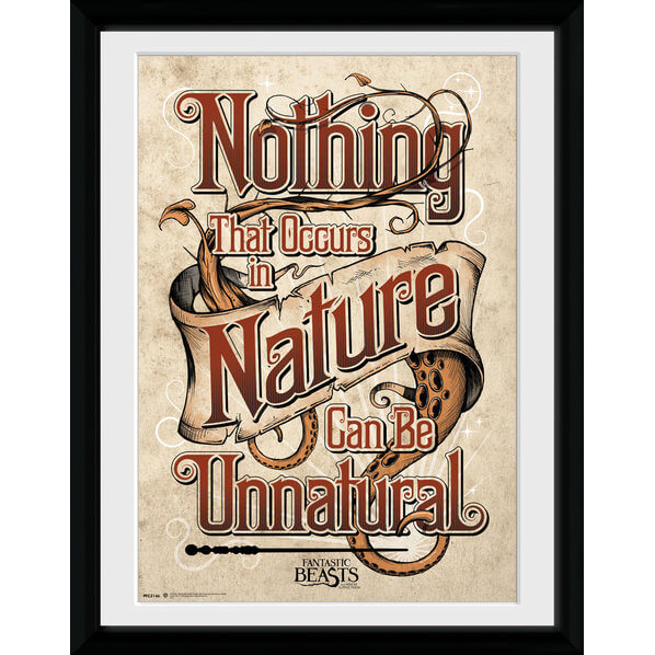Fantastic Beasts Nature Framed Album Cover - 12