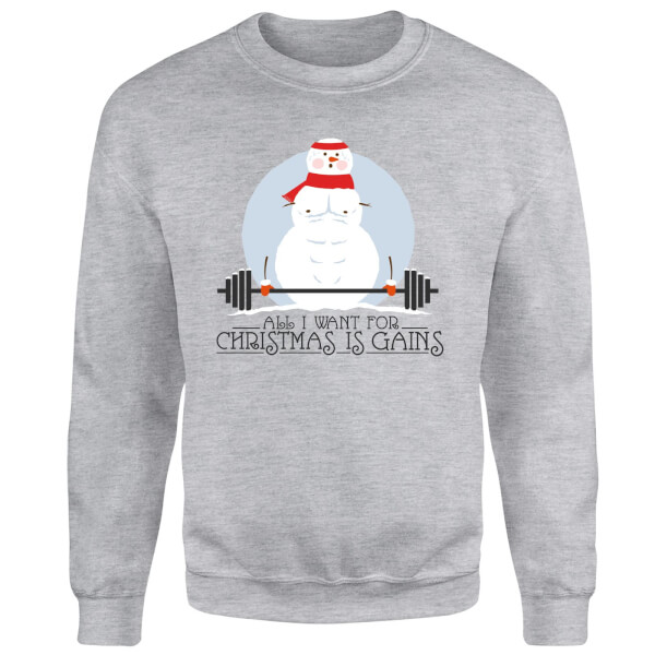 All I Want For Christmas Is Gains Sweatshirt - Grey
