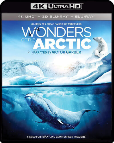 IMAX: Wonders Of The Arctic - 4K Ultra HD