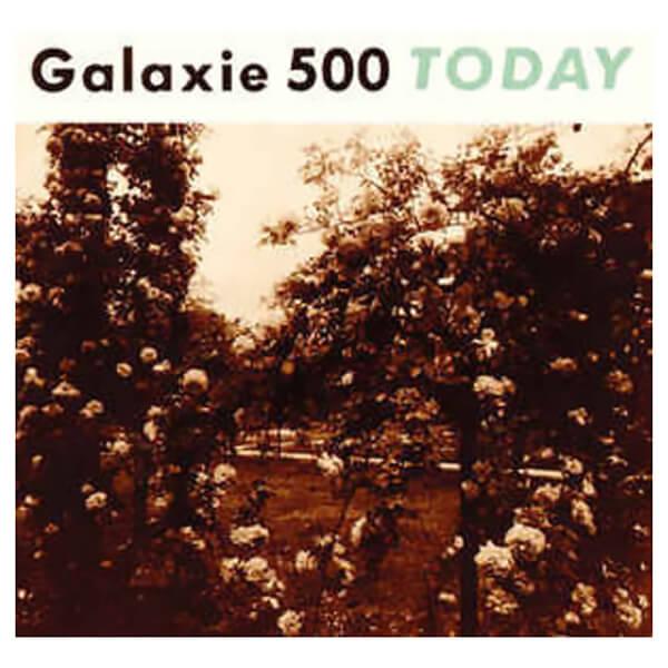 Today Vinyl