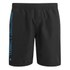 Animal Men's 19 Inch Belos Boardshorts - Black: Image 1