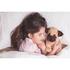Cozy Heatable Plush Pug: Image 2