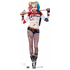 Suicide Squad Harley Quinn Cutout