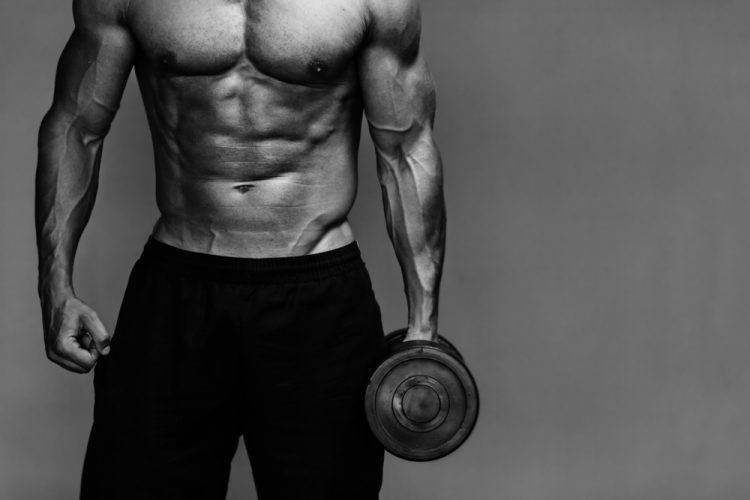 10 Steps to Optimize Muscle Building