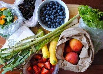 The 5 Laws of Healthy Eating