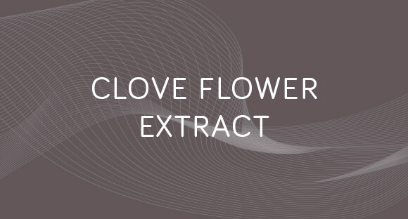Grow Gorgeous Clove Flower Extract