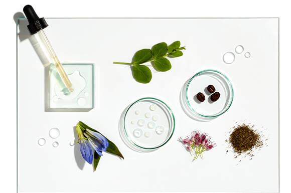 Ingredienti Scientifici Per La Cura dei Capelli Grow Gorgeous