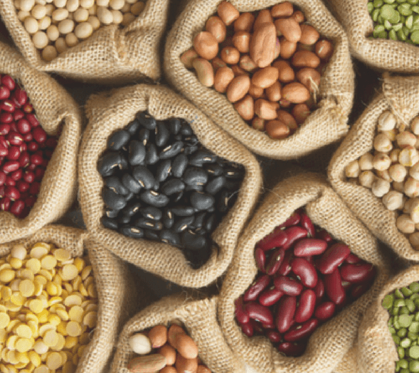 What are the best vegan protein sources?