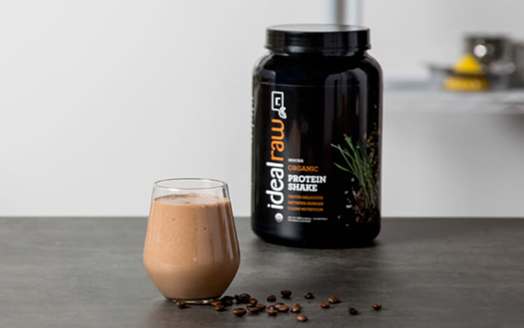 Mocha Protein Review