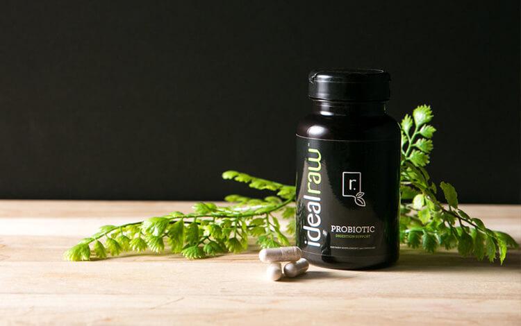 Probiotic Review