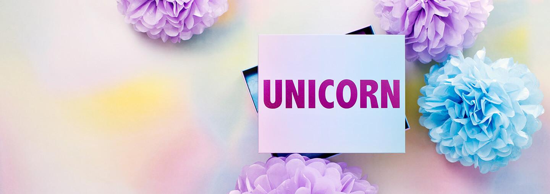 The Unicorn Box!