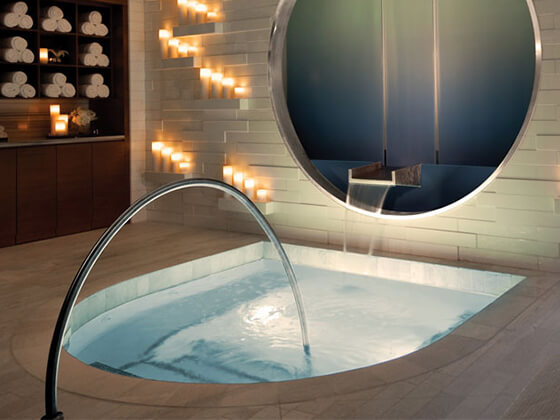 The Spa <br>Experience