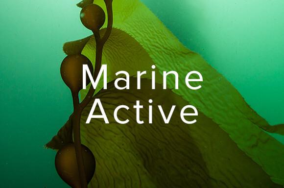 Marine Active