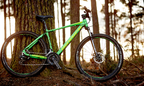 Riddick Mountain Bike