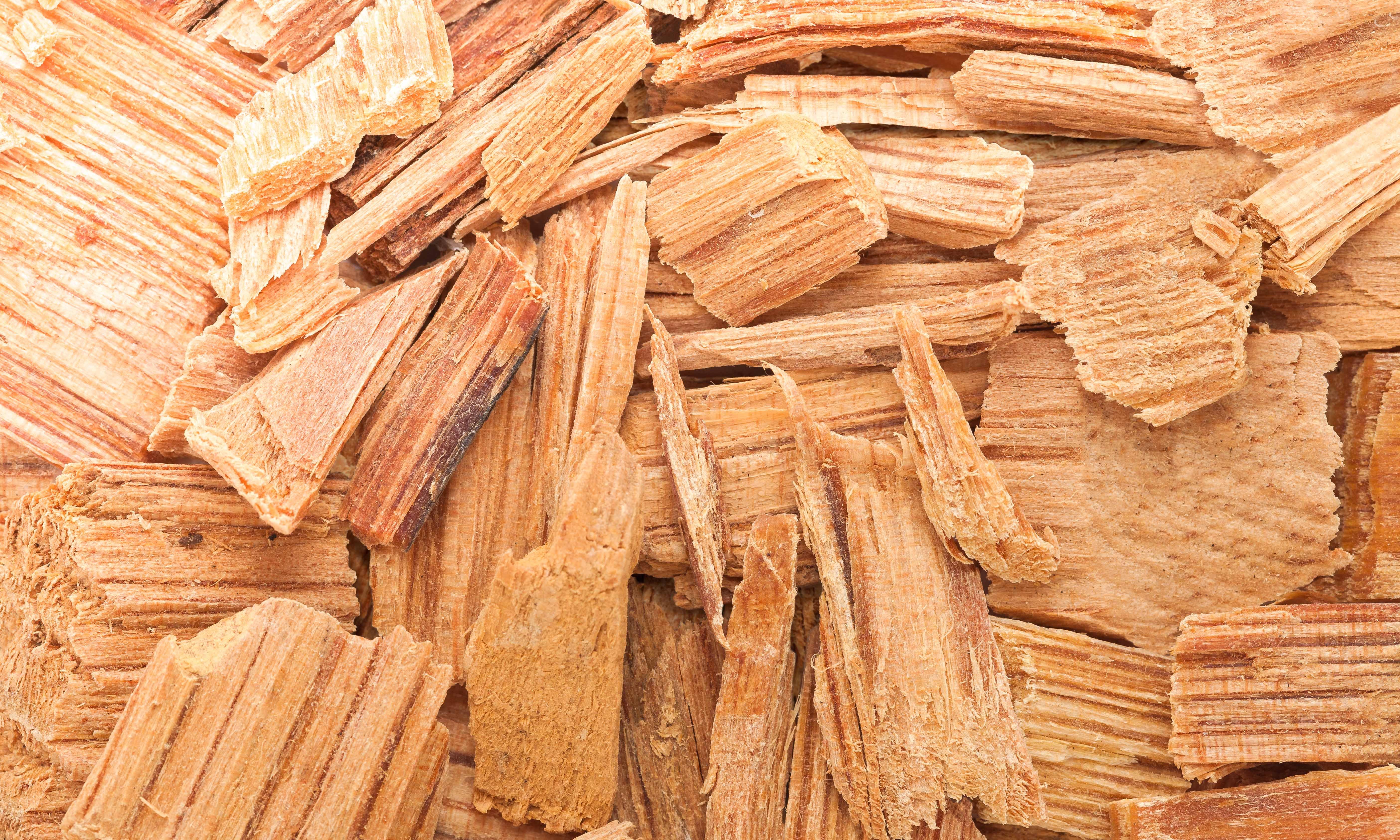 Cedarwood Oil Uses & Benefits