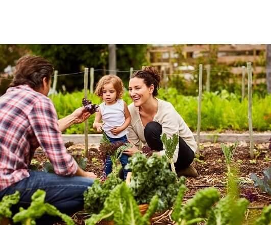 Notre engagement pour une alimentation bio de qualité