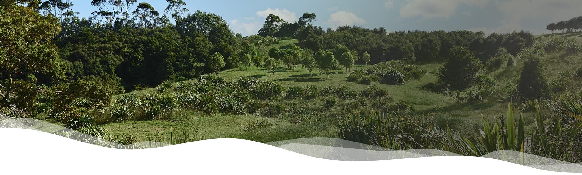 Holistic wellness Snowberry Gardens