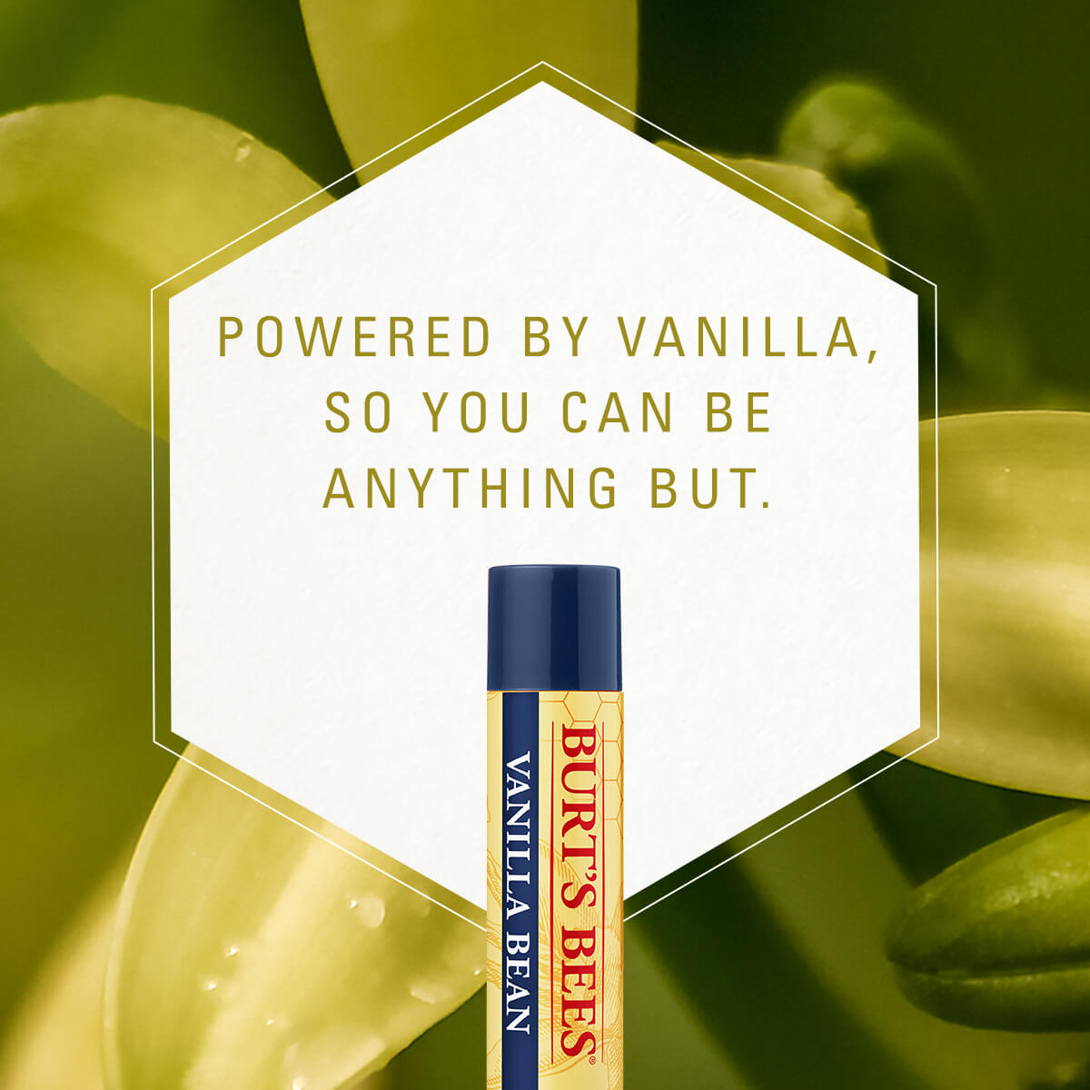 powered by vanilla, so you can be anything but,