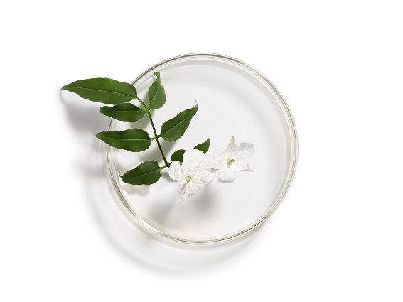 Jasmine. An active ingredient which boosts natural defences. Find out more