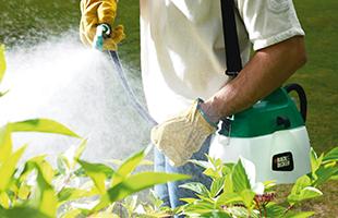 Pest Control & Weedkiller