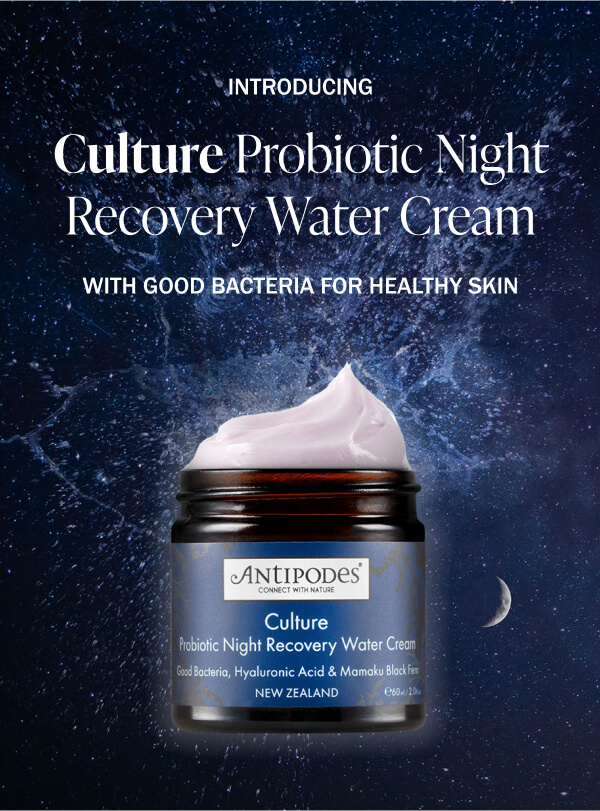 Culture Probiotic Night Recovery Water Cream