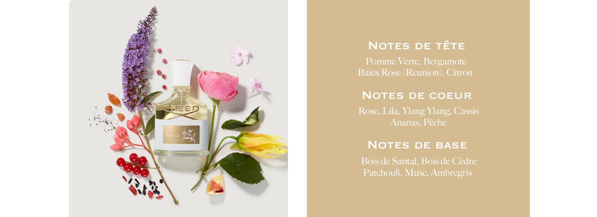 Notes De Tete: Pomme Verte, Bergamote, Baies Rose (Reunion), Citron. Notes De Coeur: Rose, Lila, Ylang Ylang, Cassis, Ananas, Peche. Notes De Base: Bois De Santal, Bois de Cedre, Patchouli, Muse. Ambregris.