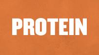 Protein}