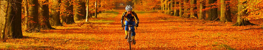 Rider wearing a men's cycling jacket amongst autumn leaves
