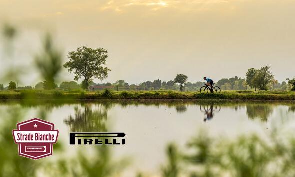Pirelli competition