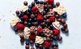 Bolitas Proteicas de Chocolate Exante