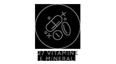 27 Vitamine e Minerali Icona