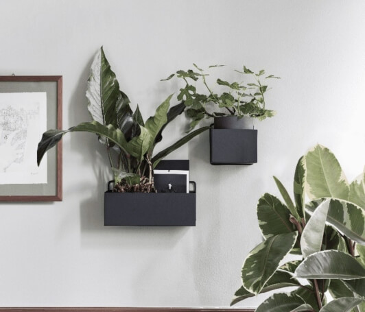 How to Use Greenery in Your Home