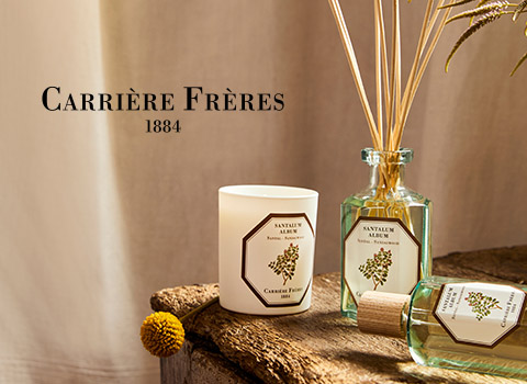 discover carriere freres