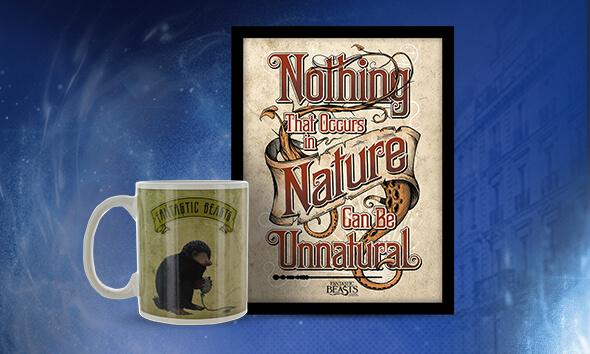 Fantastic Beasts mug, Fantastic Beasts print